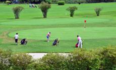 golfk